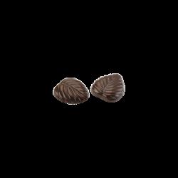 Hojas finas cacao lata II